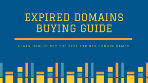 Simple Guide to Buy Expired Domains